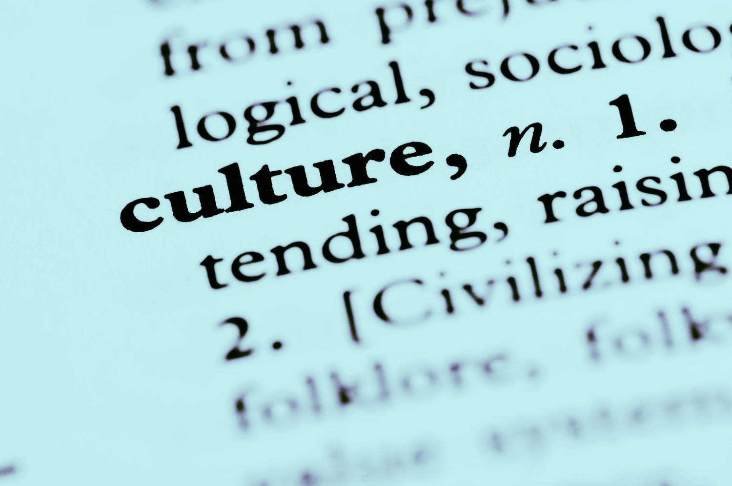 The What, Why and How of Cultural Competence