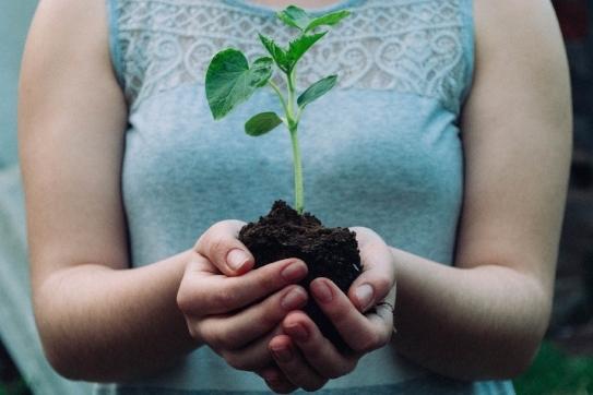Social Work and Environmental Justice: A Natural Partnership