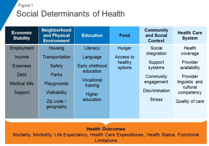 Fig 1: Social Determinant of Health